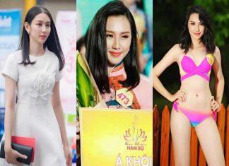 Nhan sắc các mỹ nhân Việt tham gia đấu trường sắc đẹp quốc tế năm 2018