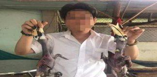 Doanh nhân làm thịt chim quý đăng facebook khiến dư luận dậy sóng
