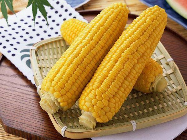 Ngô là một khẩu phần ăn không thể thiếu đối với người mắc gan nhiễm mỡ