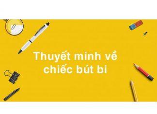 Hướng dẫn lập dàn ý thuyết minh cây bút bi